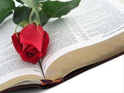 rose-bible1